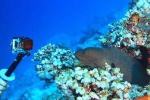 action-cam-unterwasser-action-cam