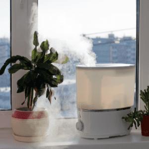 luftbefeuchter-aufstellen