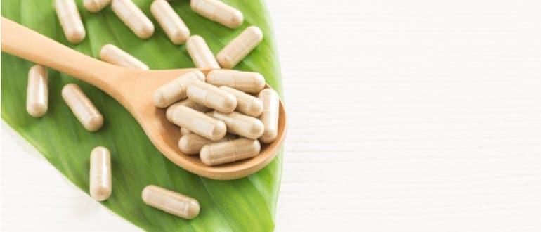 probiotika bakterien kapselform