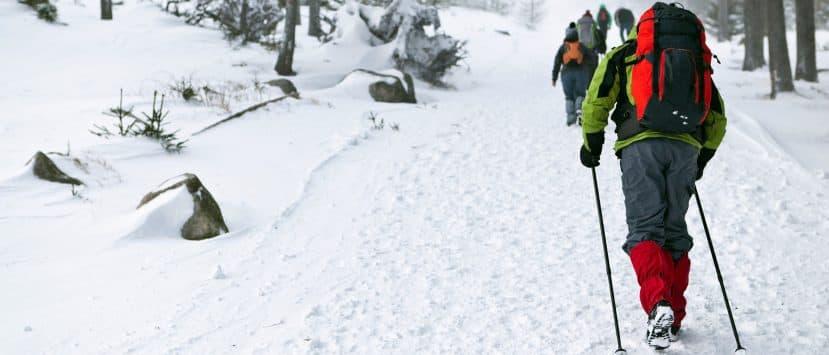 wanderstöcke kinder damen trail aluminium holz