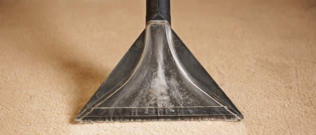 Waschsauger wird eingesetzt, um einen beigen Teppich zu reinigen.