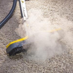 dampfreiniger teppichreinigung