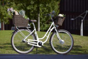 e-bike-belastungsgrenze