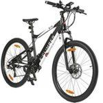 ebike-mountainbike