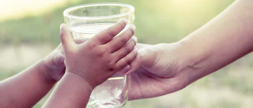 Wasserfilter-Vergleich