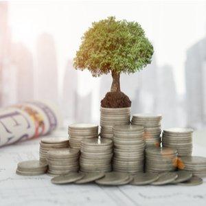 Baum der auf Münzen steht, was Öko Fondssparplan symbolisiert