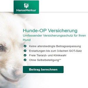 Kurzübersicht zur Hunde-OP-Versicherung der HanseMerkur