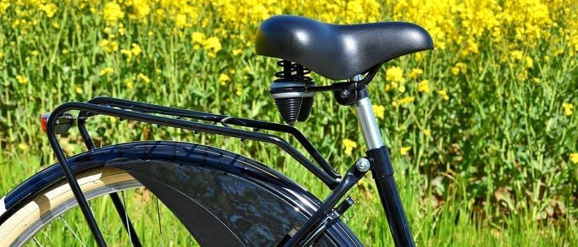 Fahrradsattel Test auf OE24.at | Test & Vergleich 2020