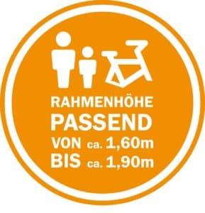singlespeed-bike-rahmen